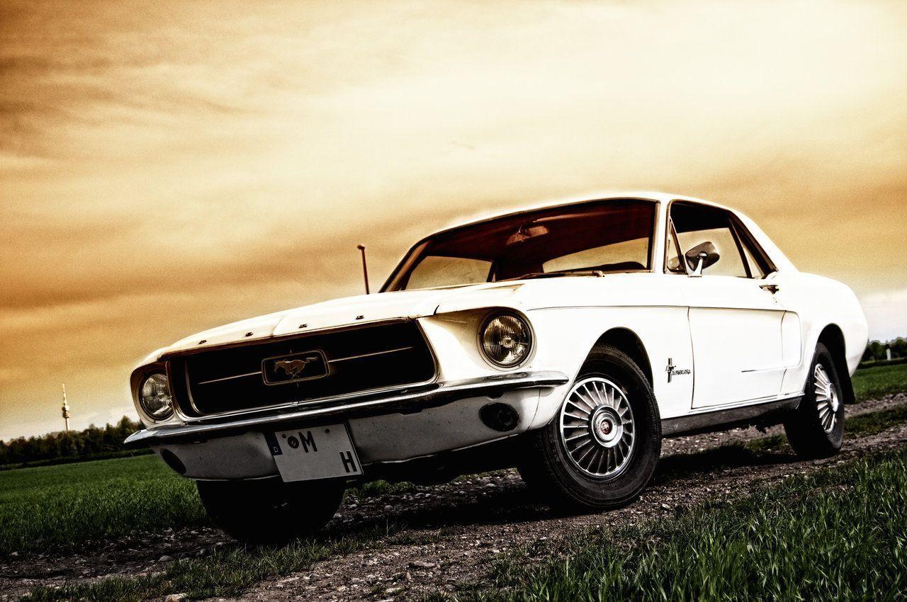 1967 Mustang In Depth Guide