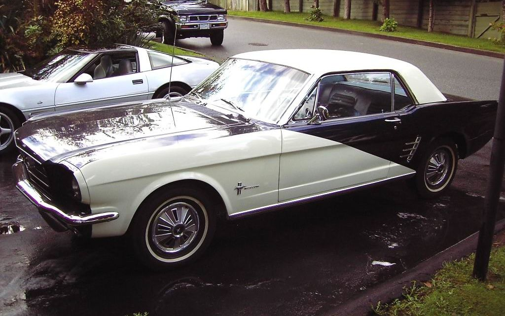 Mustang Player's Special Edition Car