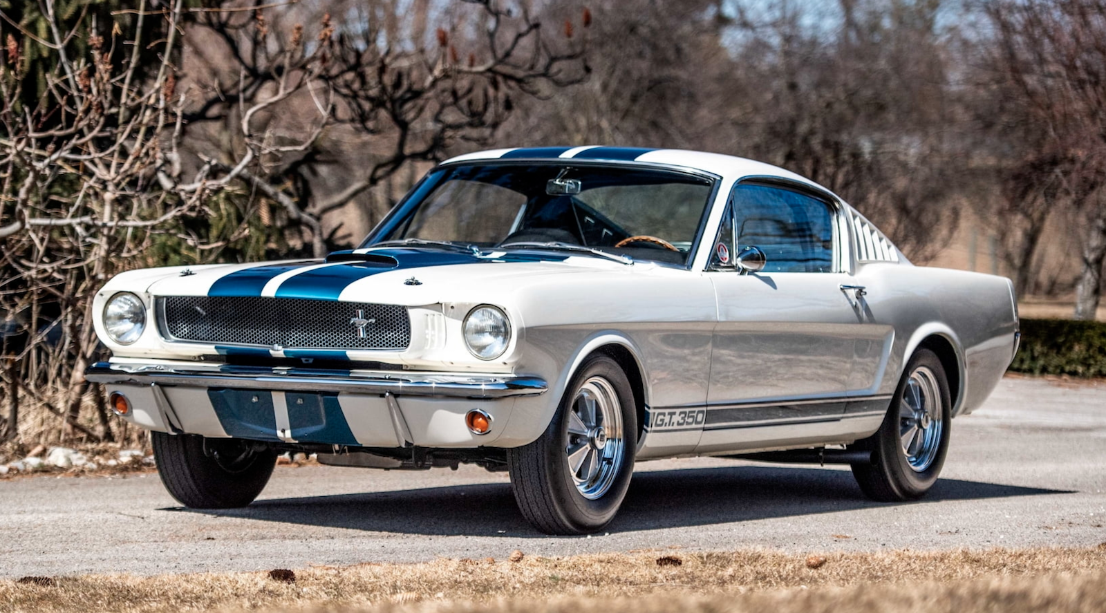 65 Shelby Mustang