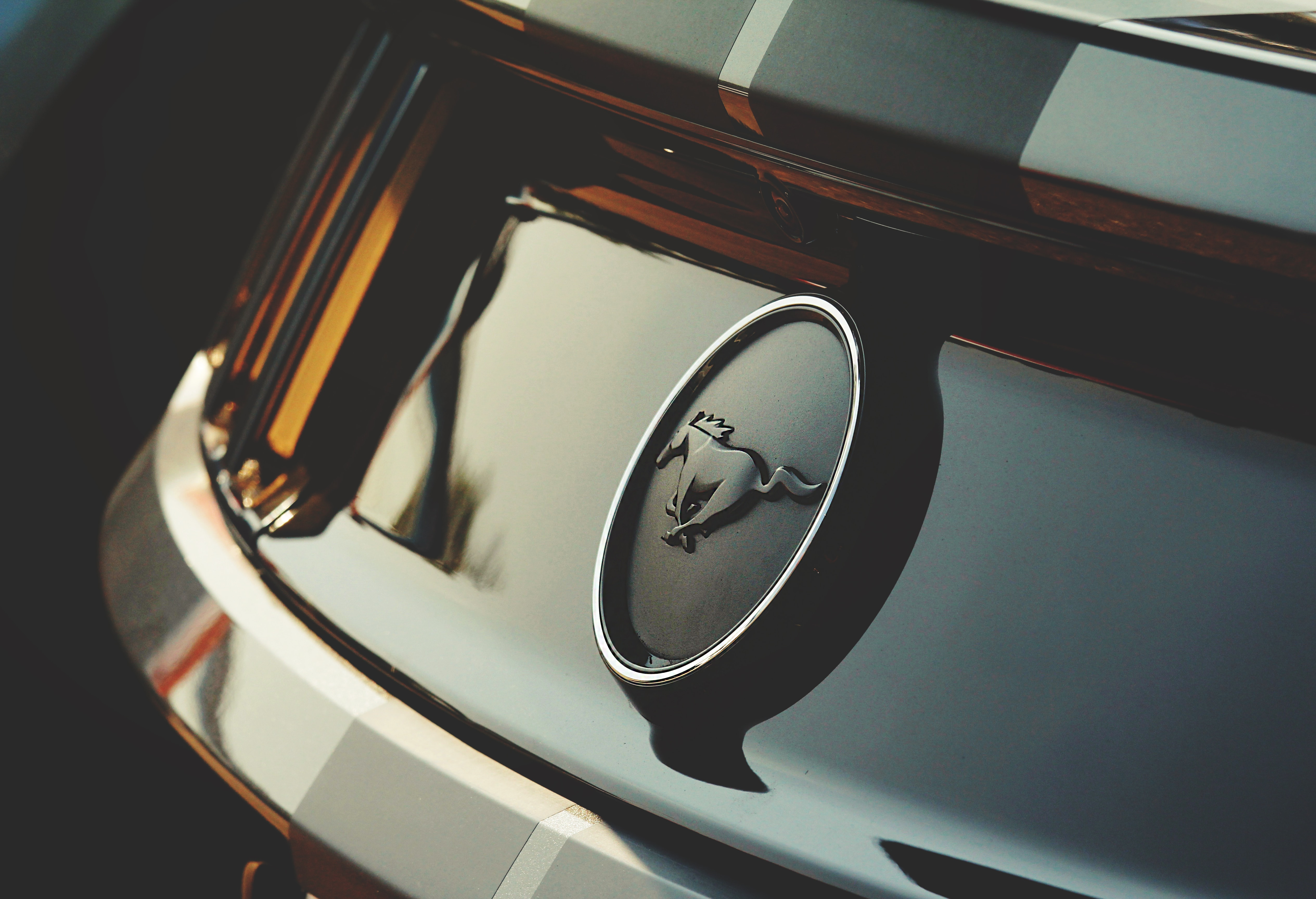 mustang specs privacy page