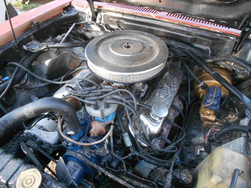 1978 Mustang 302 engine