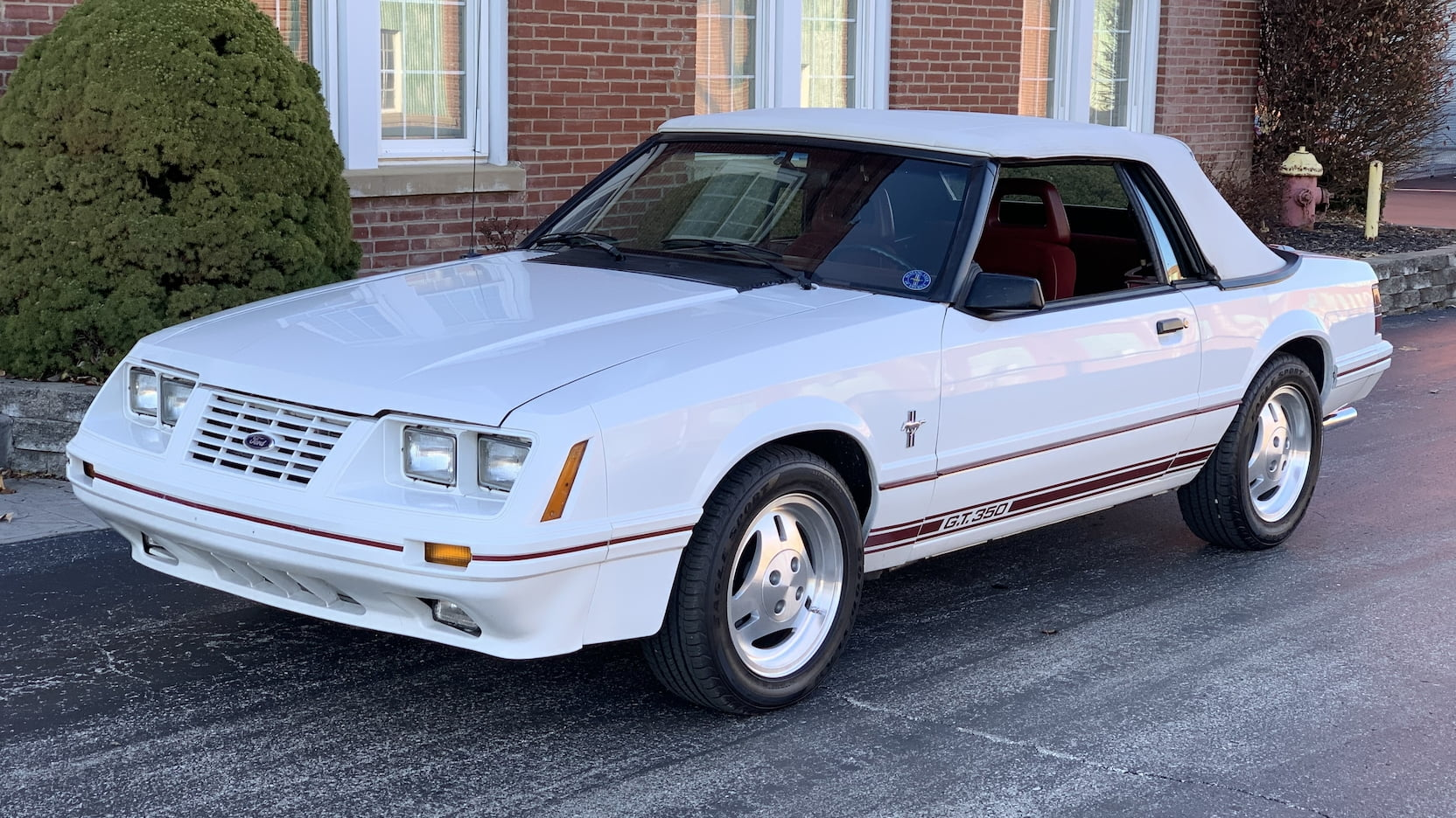 1984 Mustang Colors