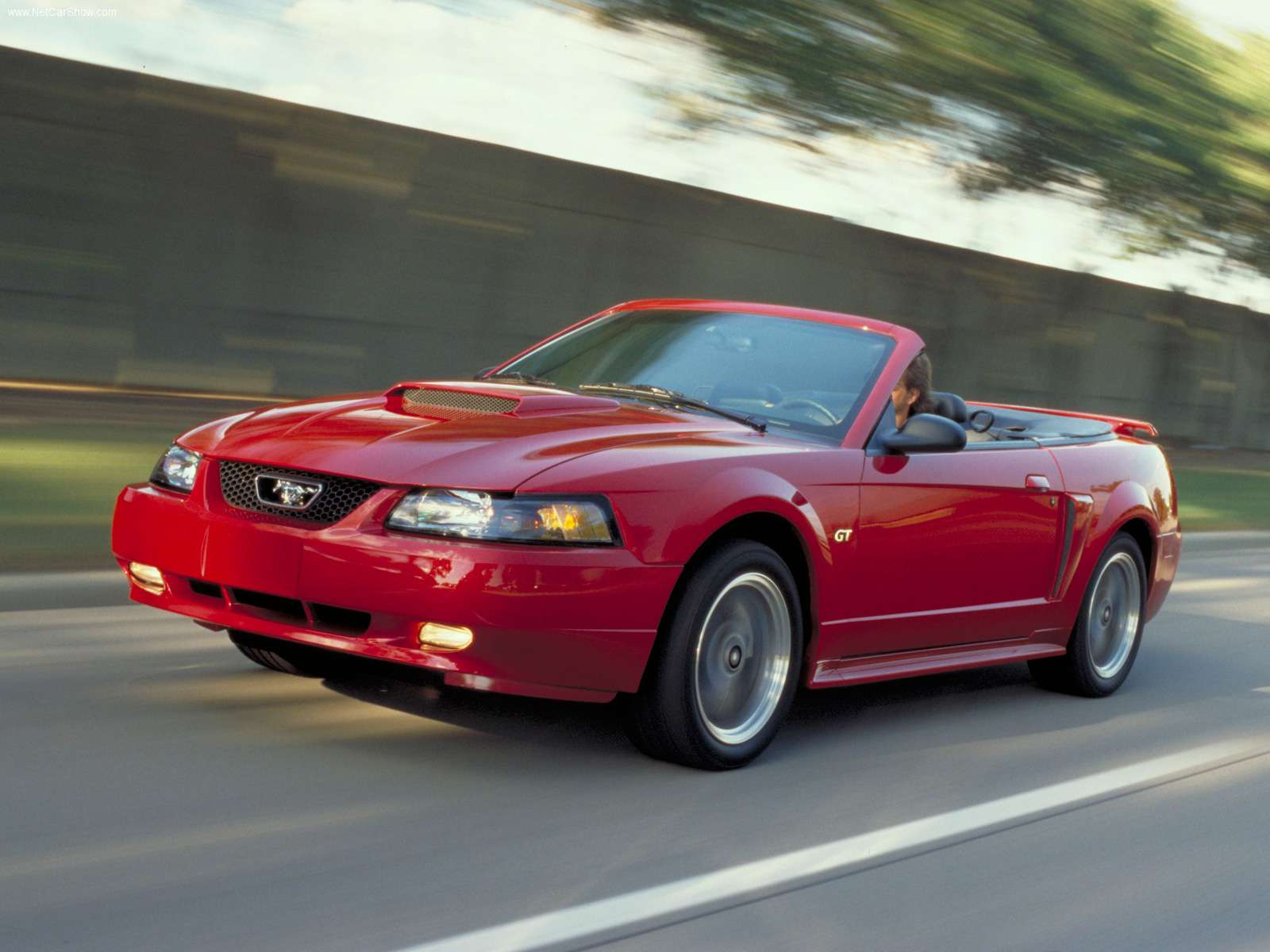 2002 Mustang Color Information