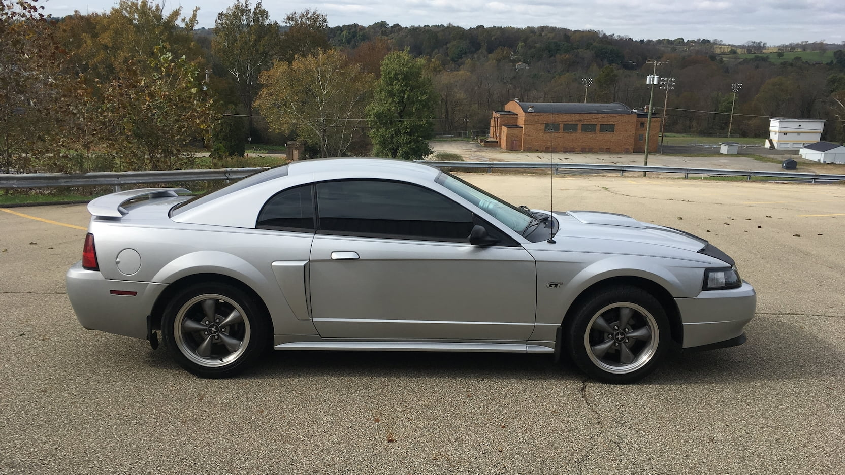 2003 Mustang Color Information
