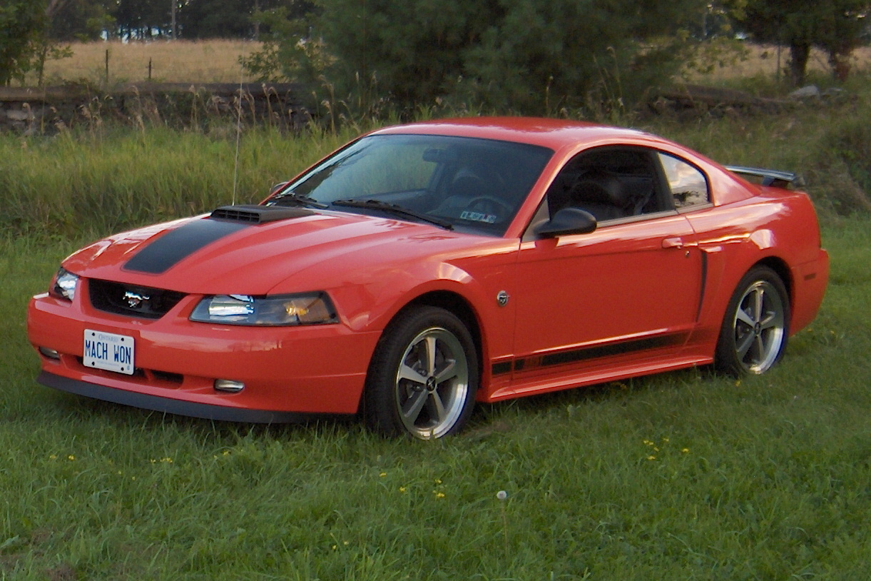 2004 Mustang Color Information