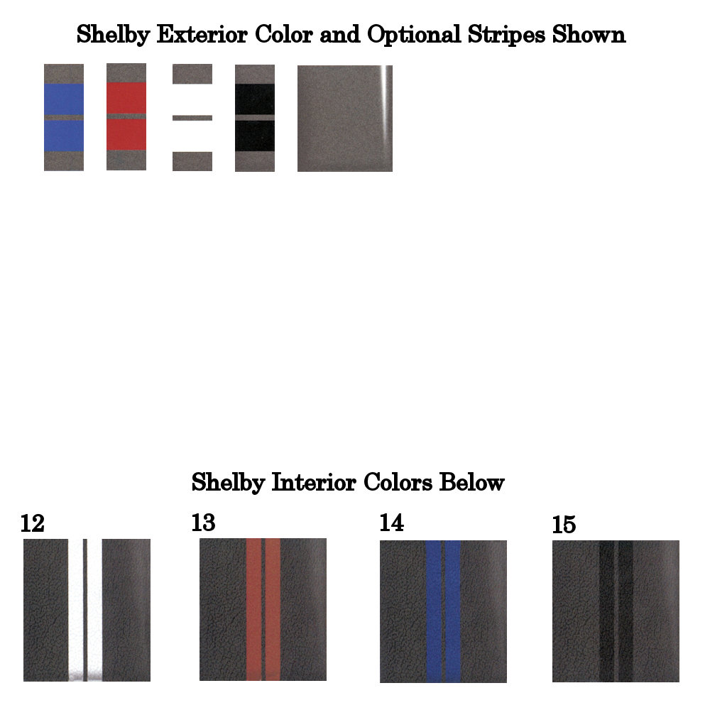 2014 Shelby Sterling Gray Metallic