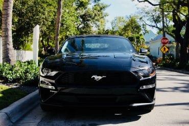 Canada Sales Mustang
