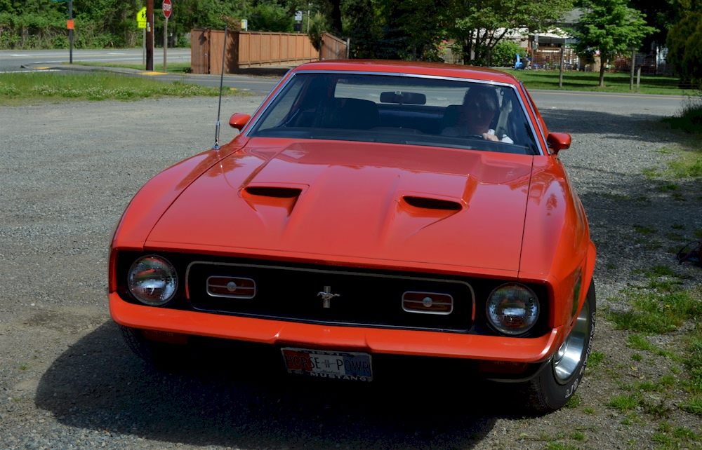 1971 Ford Mustang Spring Special Value Hardtop