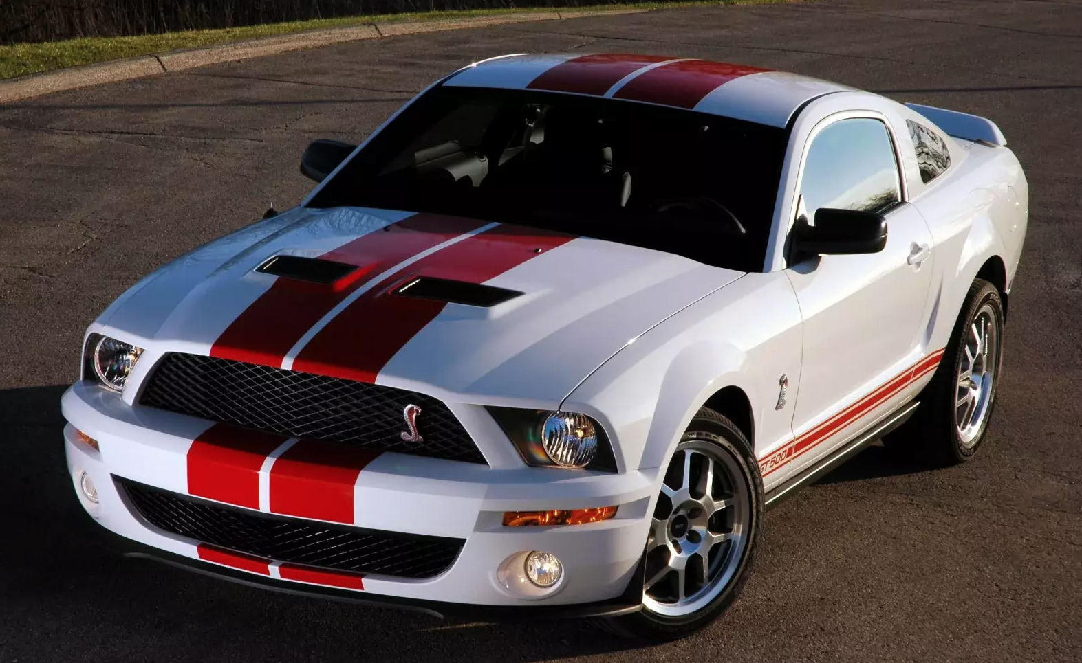 2007 GT500 Appearance Package