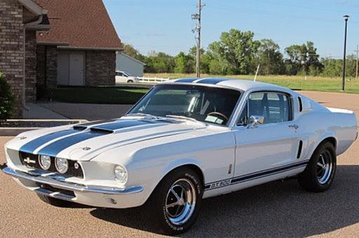 White 1967 GT500