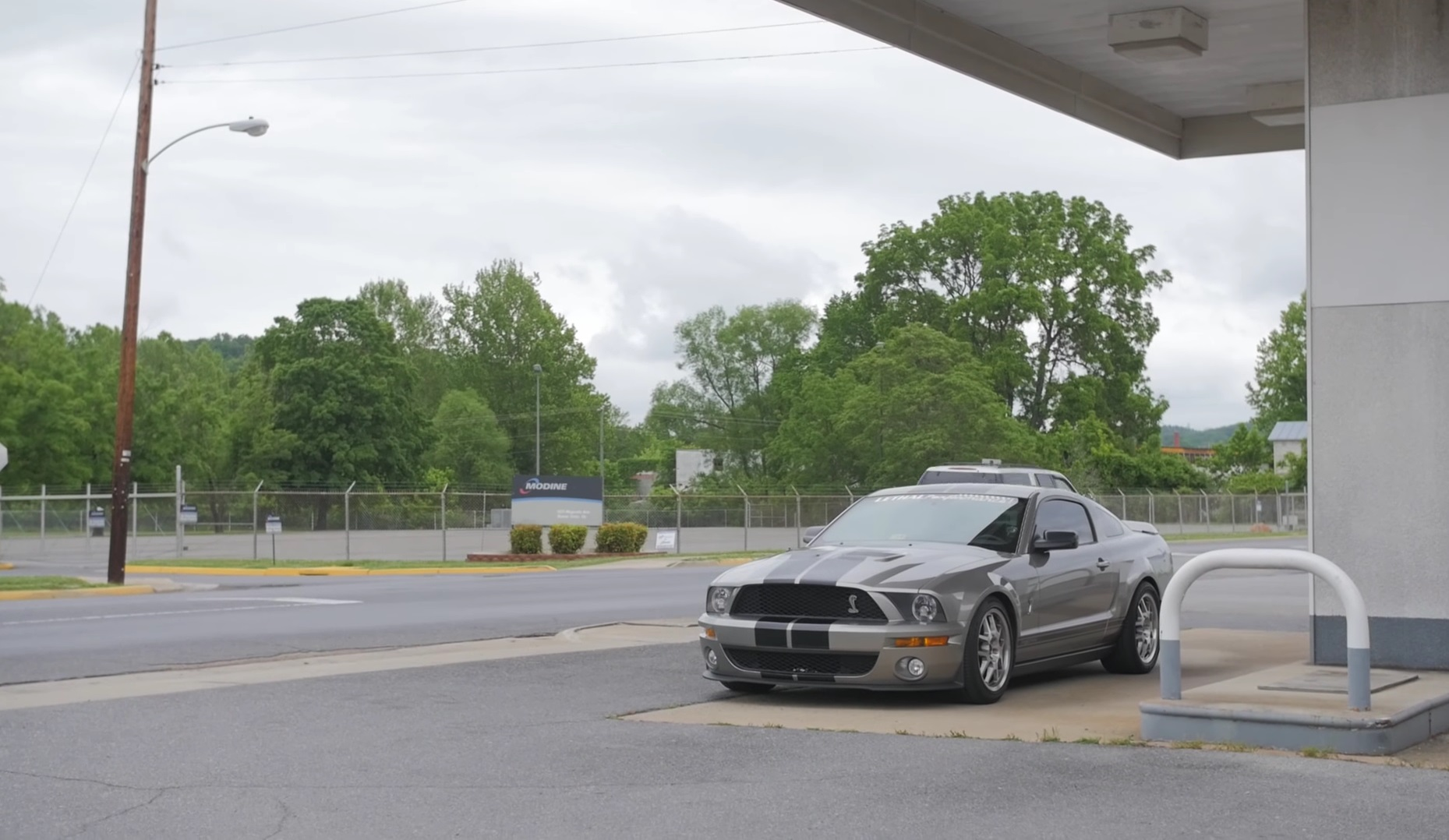 Video: 2008 Ford Mustang Shelby GT500 - The Crowd Pleaser