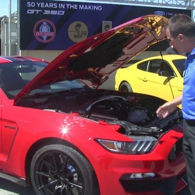 Video: 2016 Ford Mustang Shelby GT350 vs GT350R - Everything You Want to Know